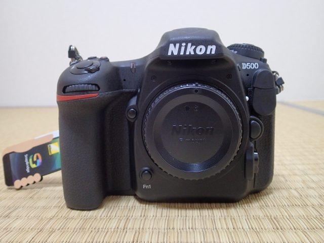 P6059081