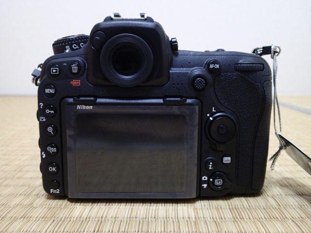 P6059082