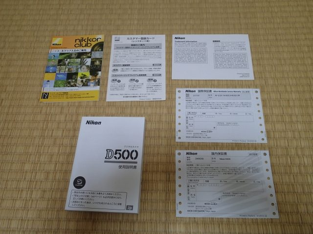 P6059096