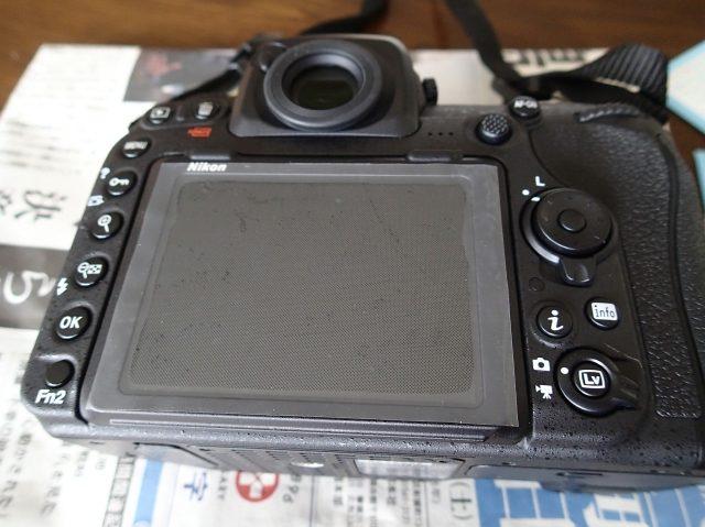 P6059168