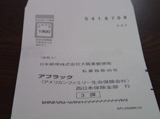 P6189815